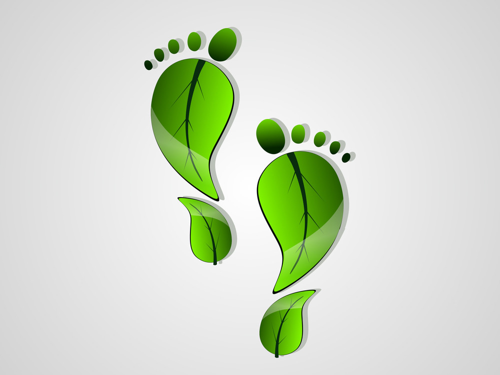 Green Carbon Leaf Footprint For Vector Illustration