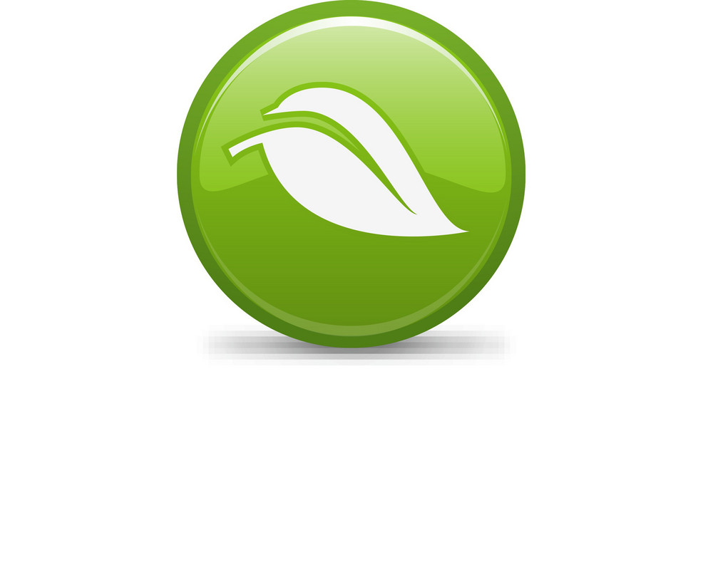 Green Energy Lite Plus Icon