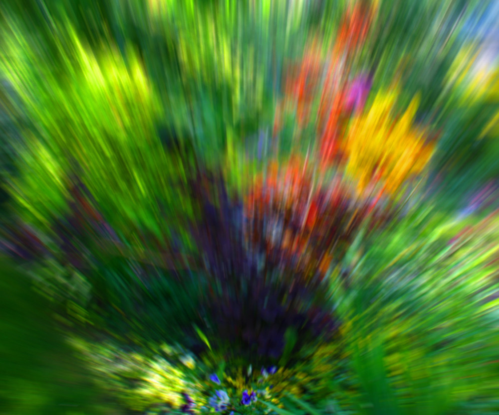 Green Garden Abstract Background