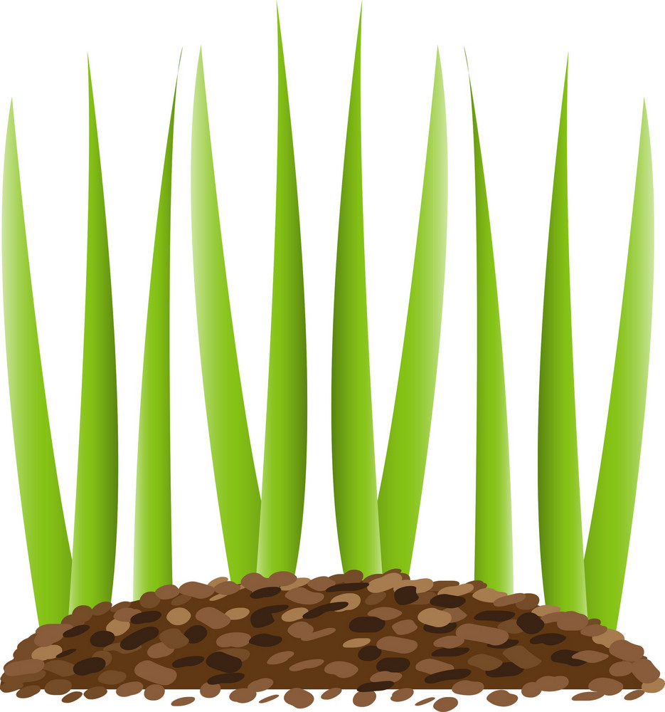 Green Grass Lite Plus Icon