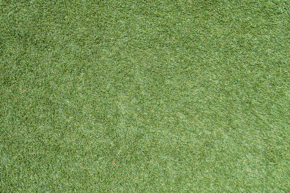 Green grass soccer field texture and background