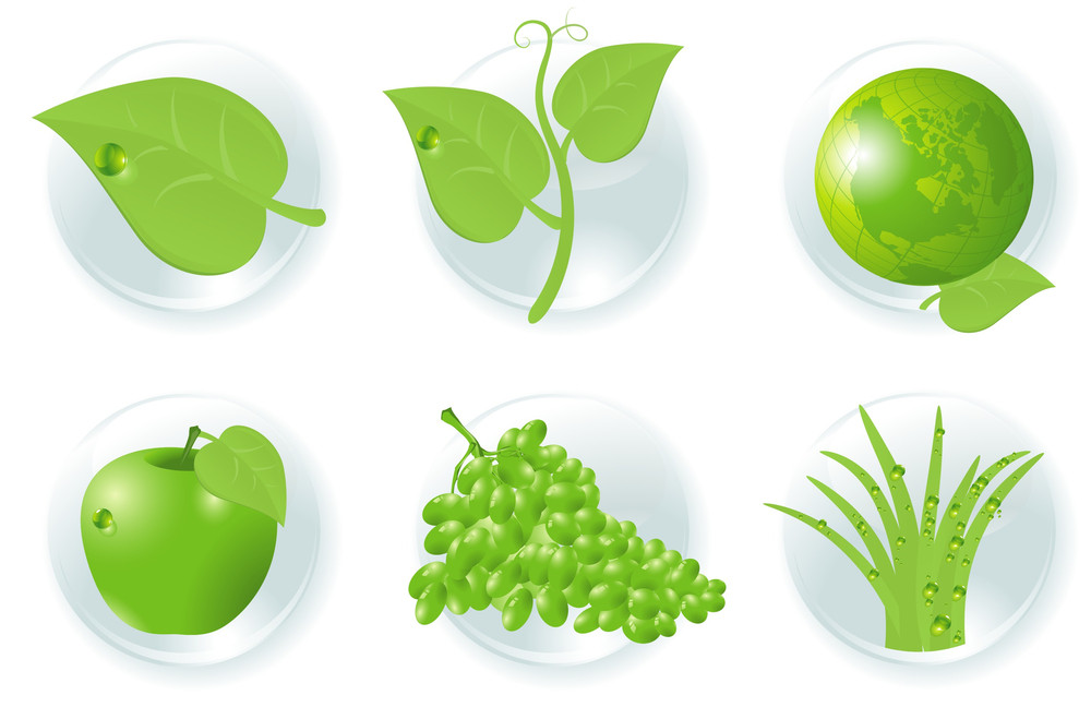 Green Icons. Vector.