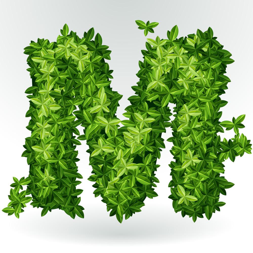 Green Leaves Summer Vector Alphabet.