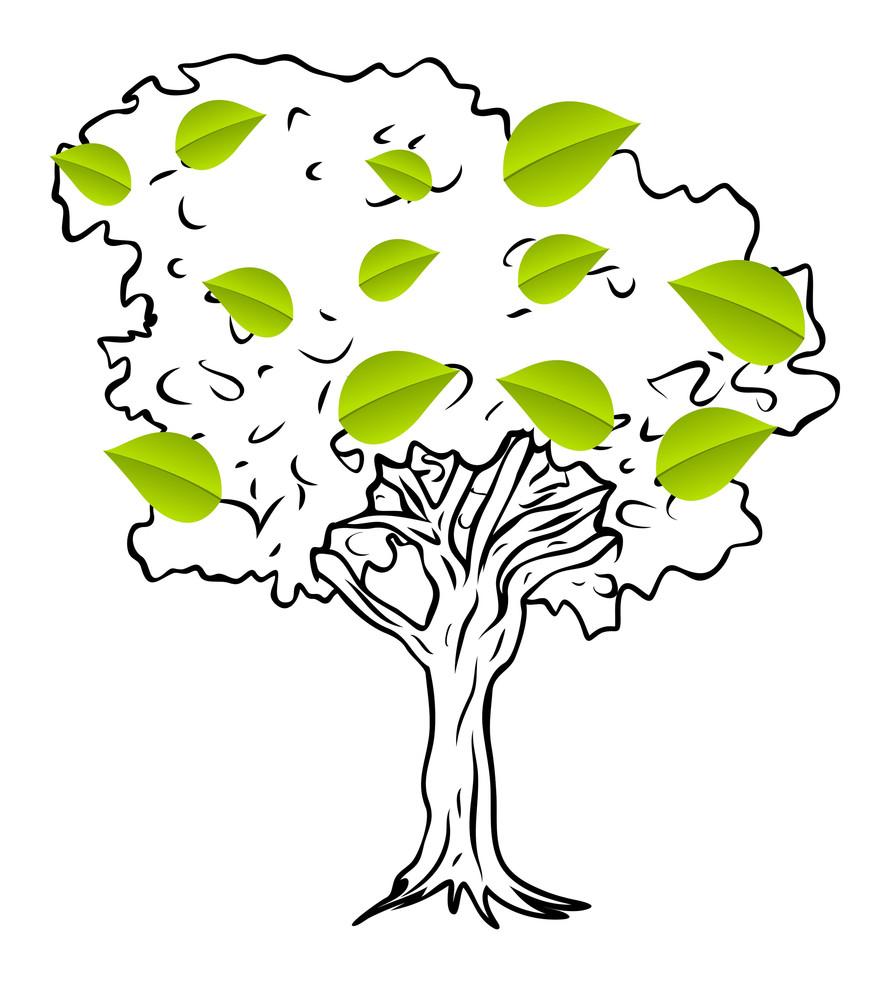 Green Leaves Tree Vector