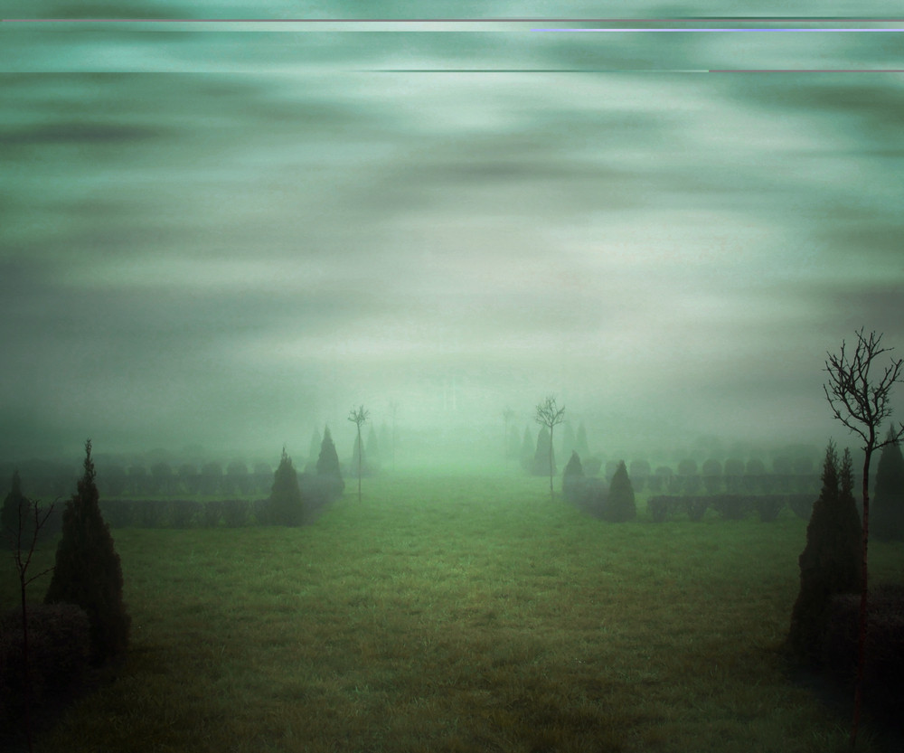 Green Misty Background