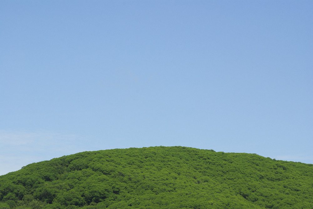 green mountain forest on blue sky