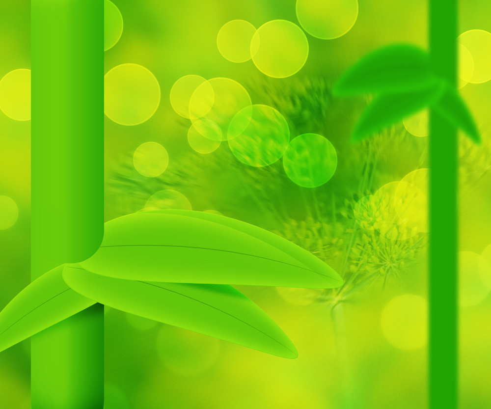 Green Nature Bamboo Abstract Background