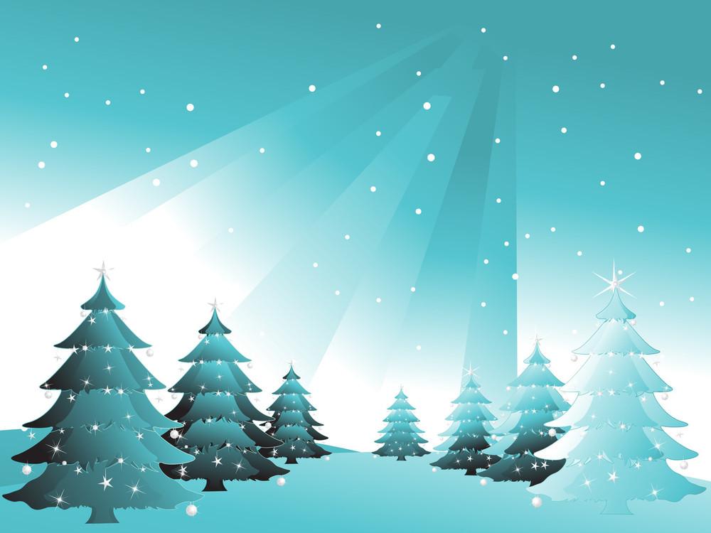 Green Spruce In Snow Sky