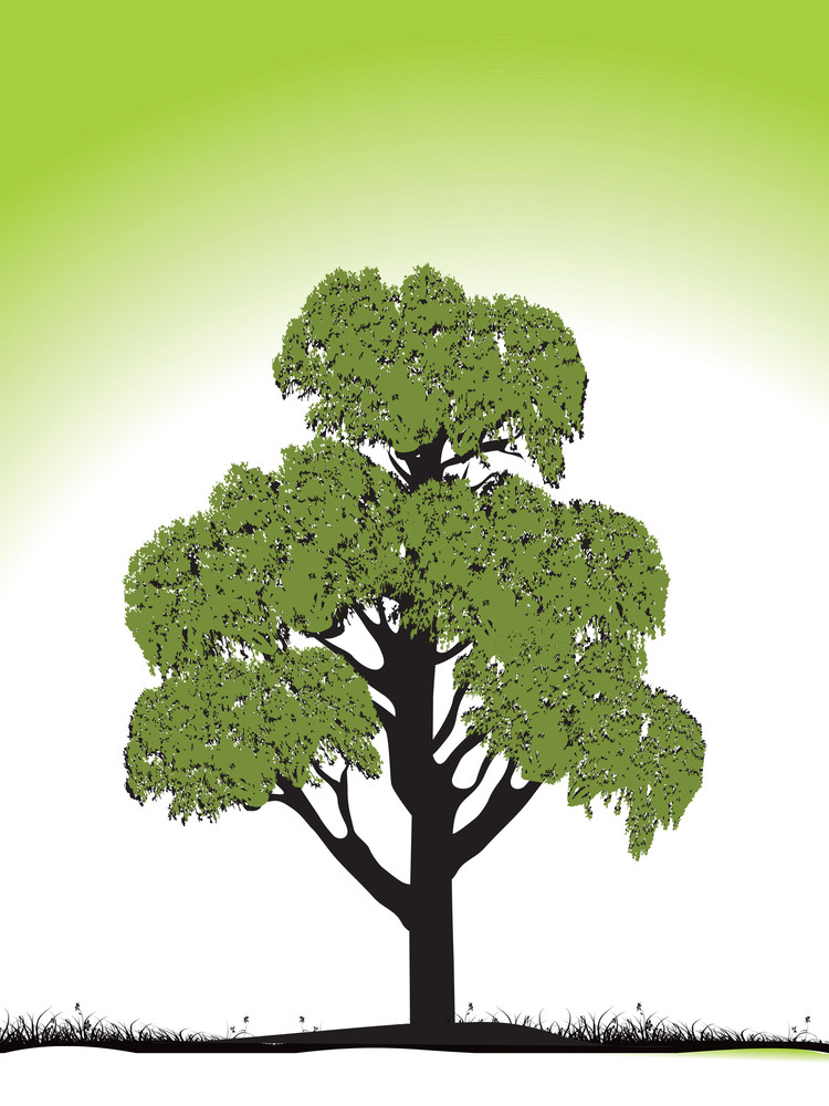 Green Tree Silhouette Isolated On Green