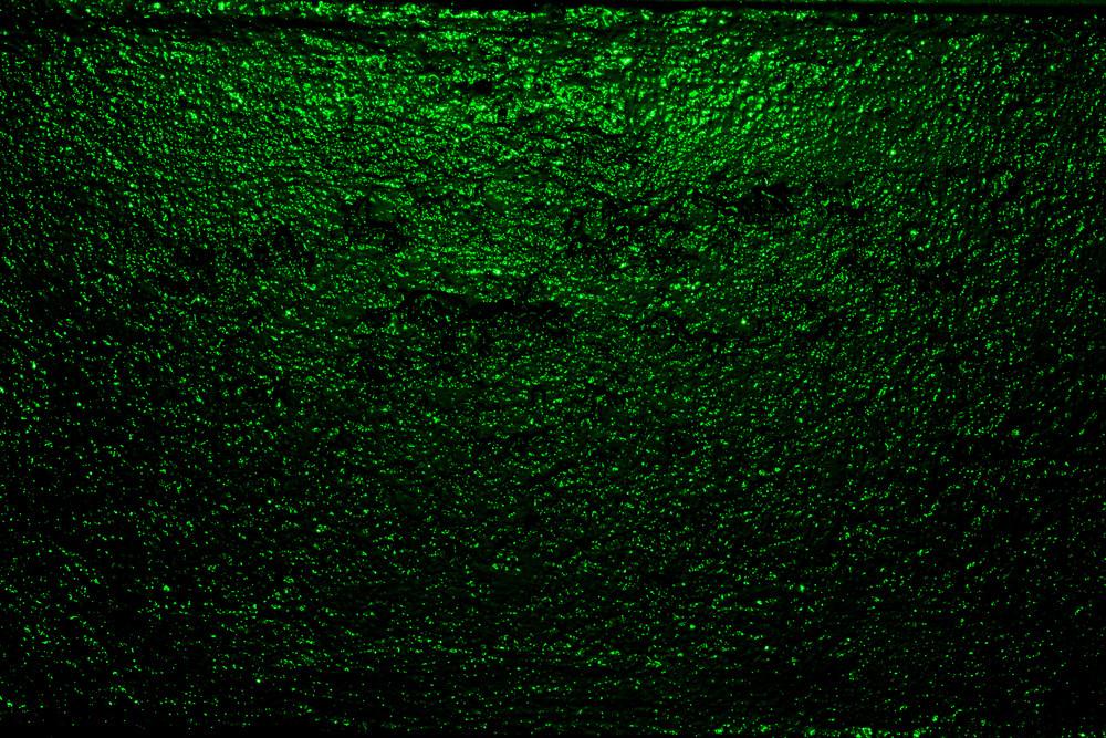 Green002