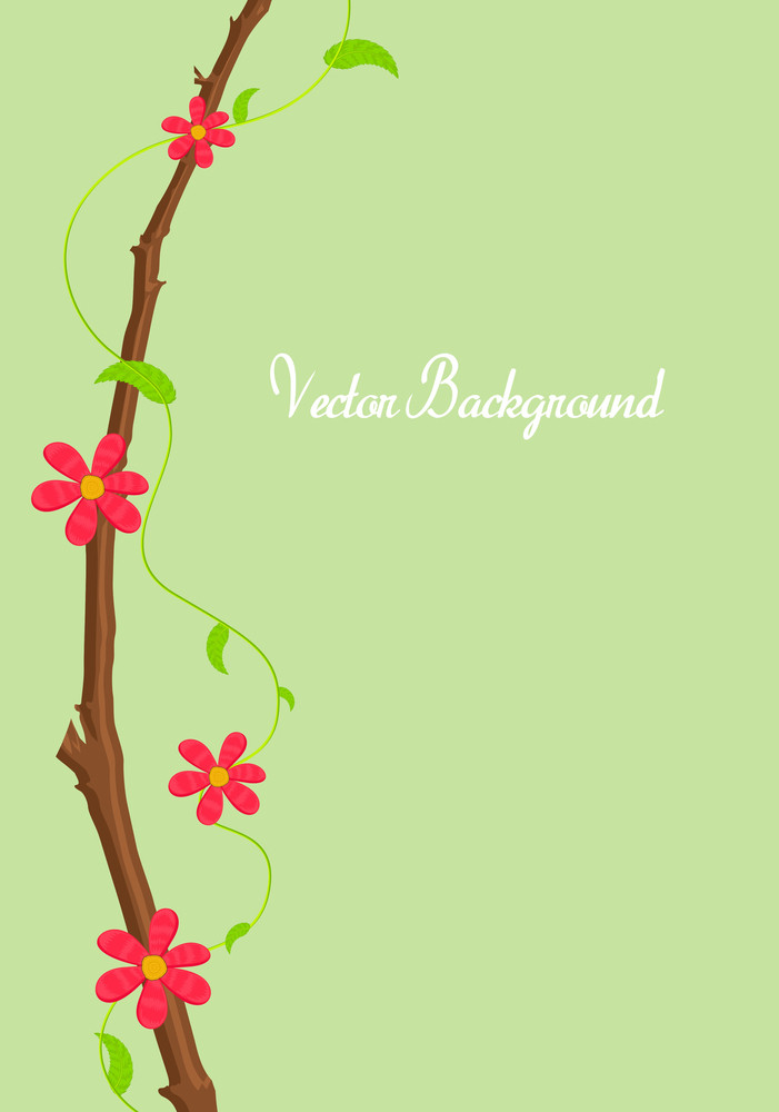 Greeting Card Flowers Background