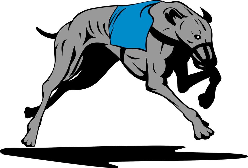 Greyhound Dog Racing Retro