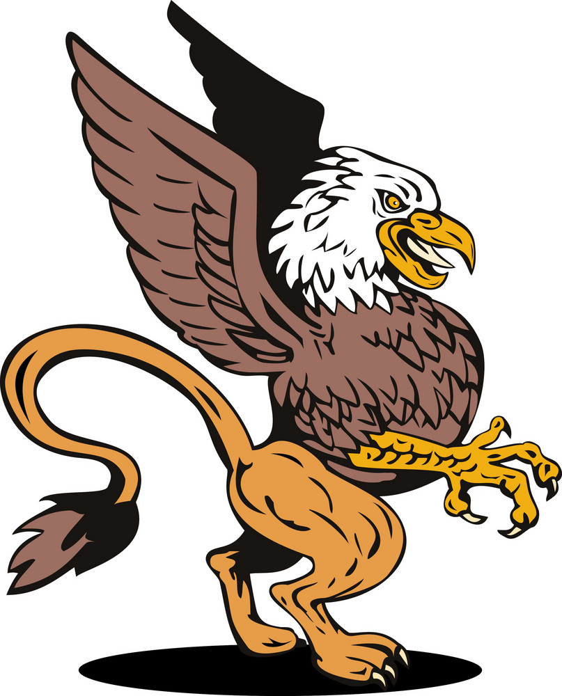 Griffin Lion Fighting