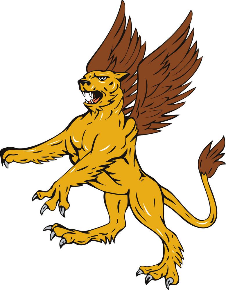 Griffin Lion