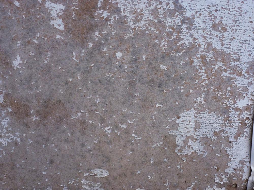Grunge 44 Texture