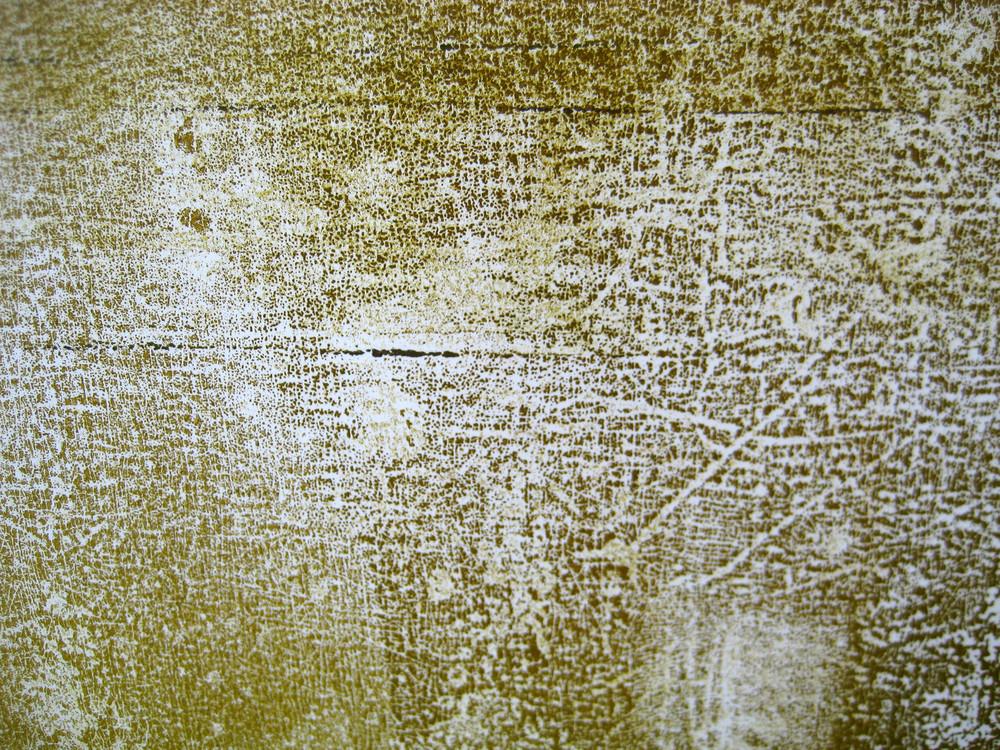 Grunge 51 Texture