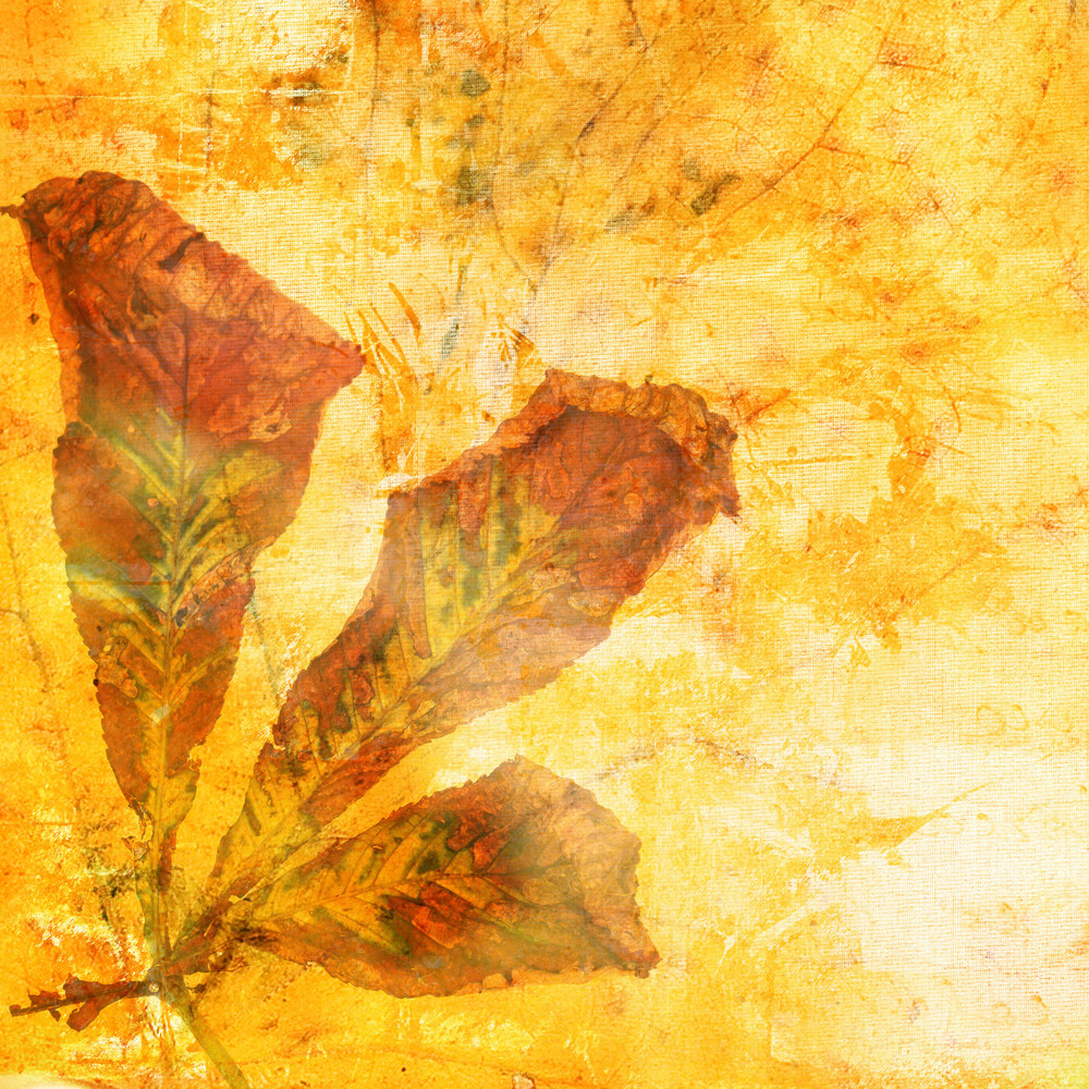 Grunge Autumn Leaves Background