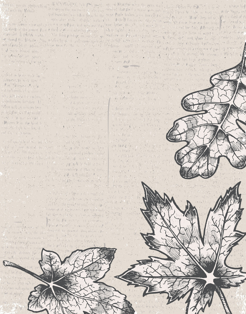 Grunge Background With Leaves Vector Illustration