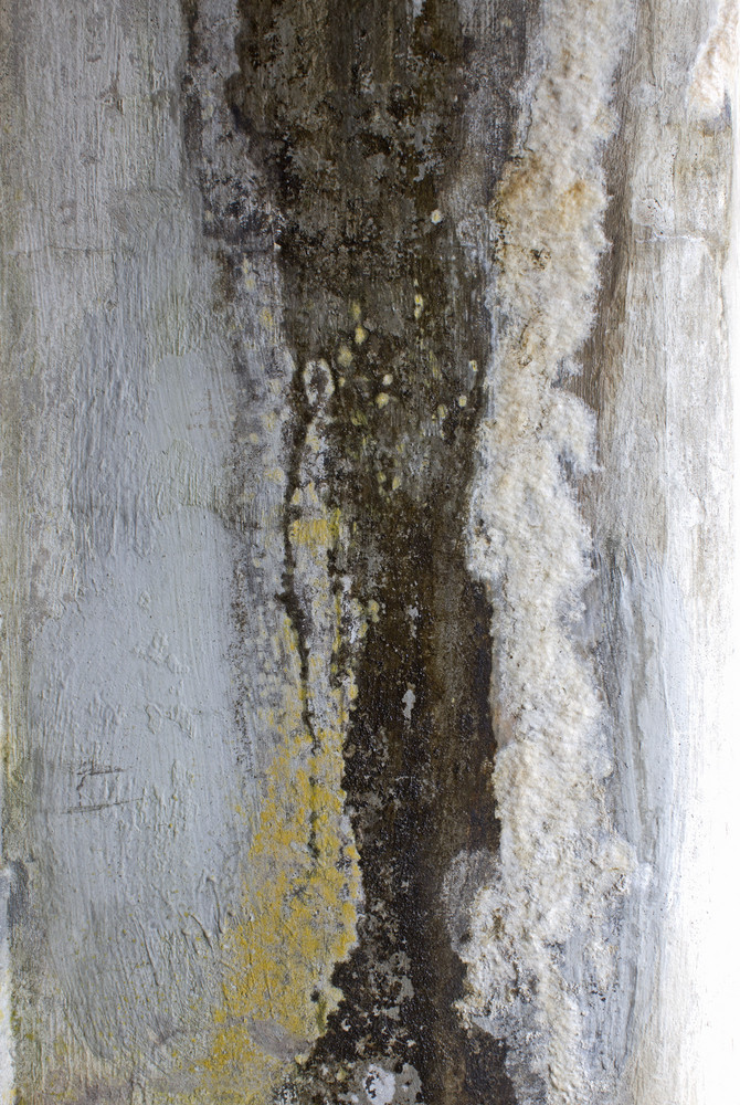 Grunge Concrete Wall 14
