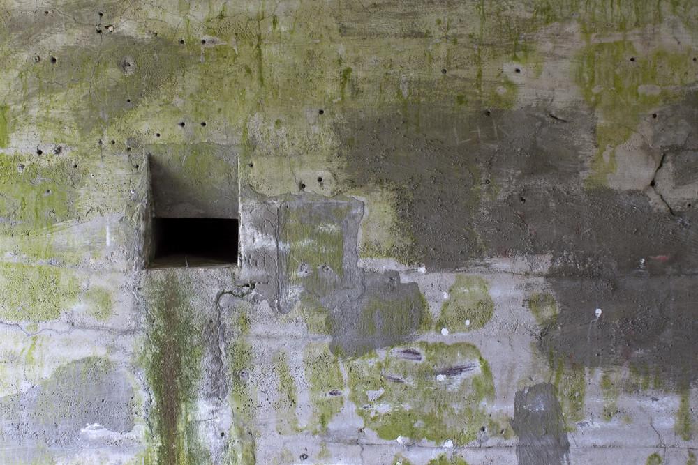 Grunge Concrete Wall 29