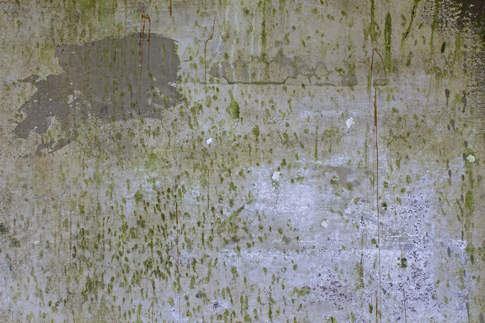 Grunge Concrete Wall 35
