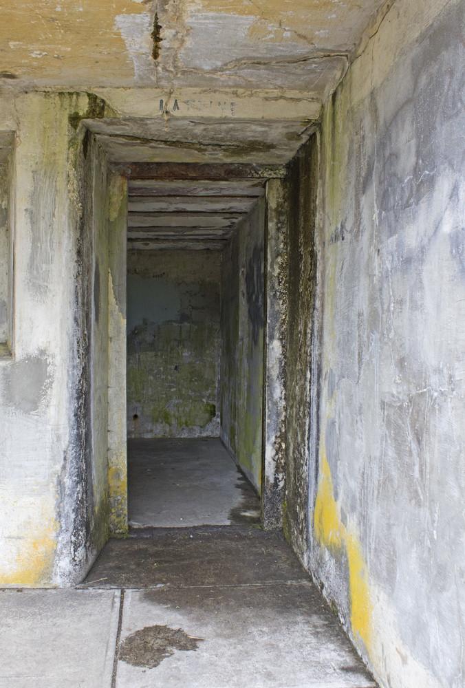 Grunge Concrete Wall 80