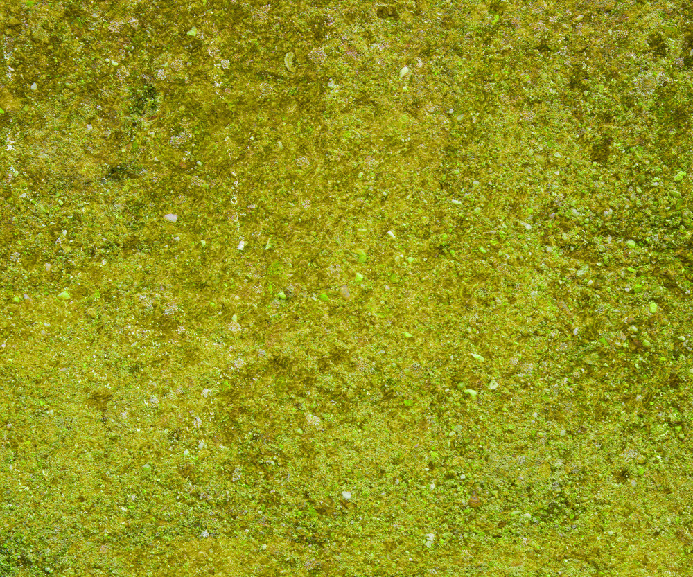 Grunge Green Wall Background Texture
