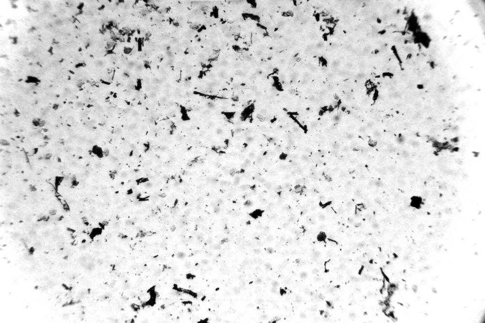 Grunge Grit 6 Texture