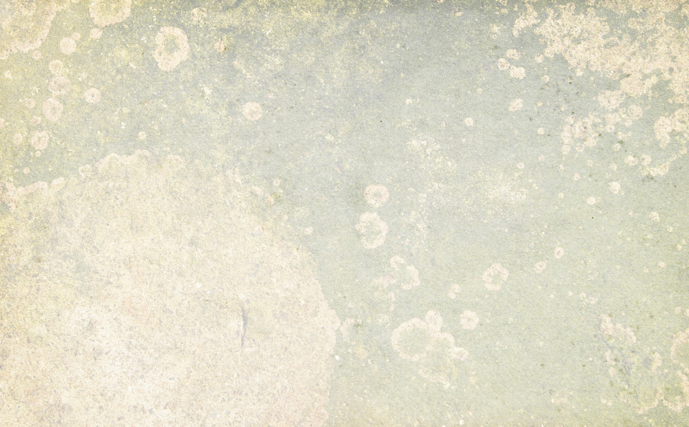 Grunge Light 33 Texture