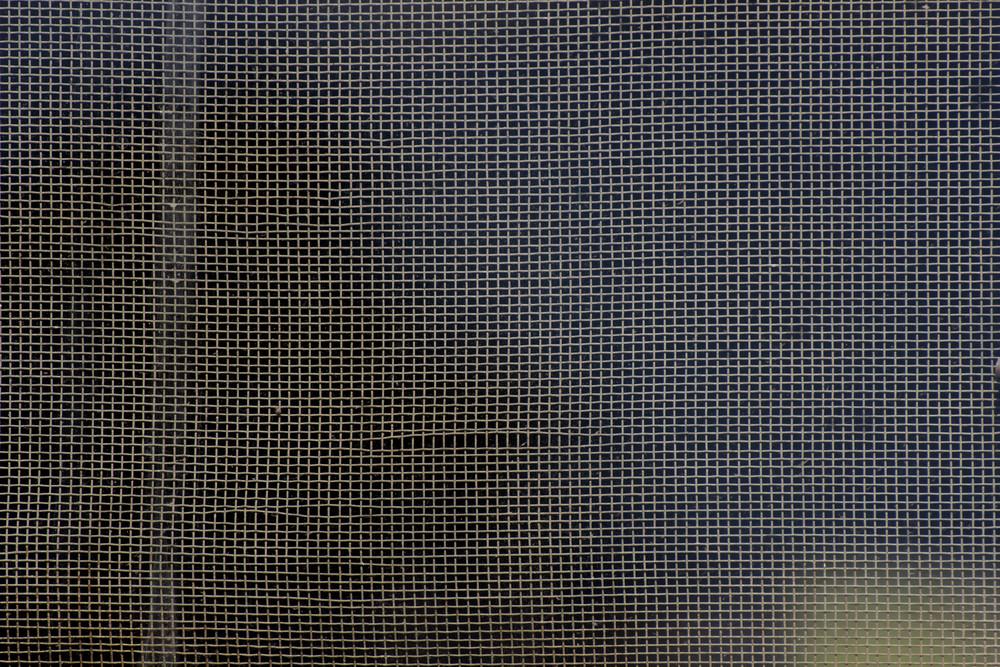 Grunge Net Texture