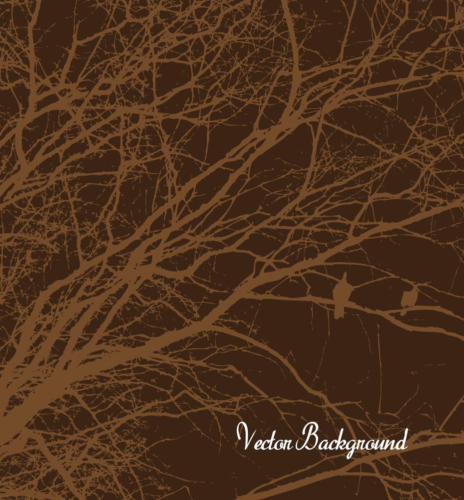Grunge Tree Branches