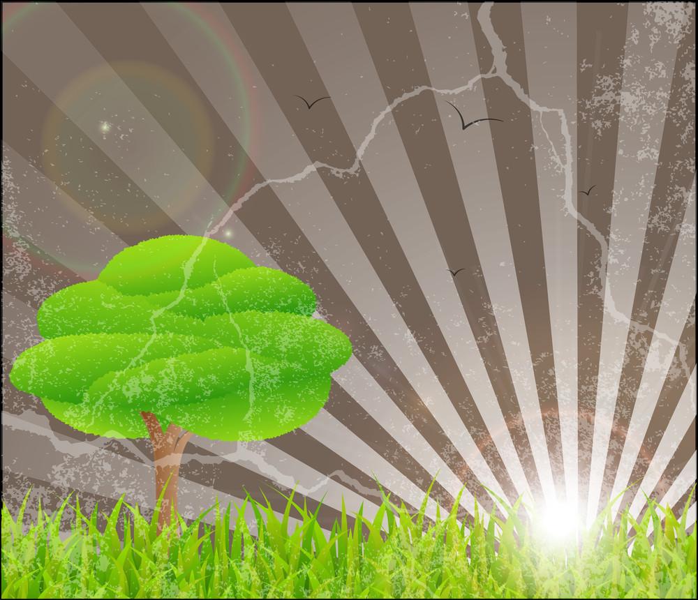 Grunge Tree Grassline Sunburst