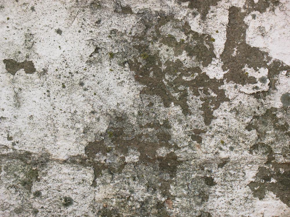Grunge Urban 87 Texture