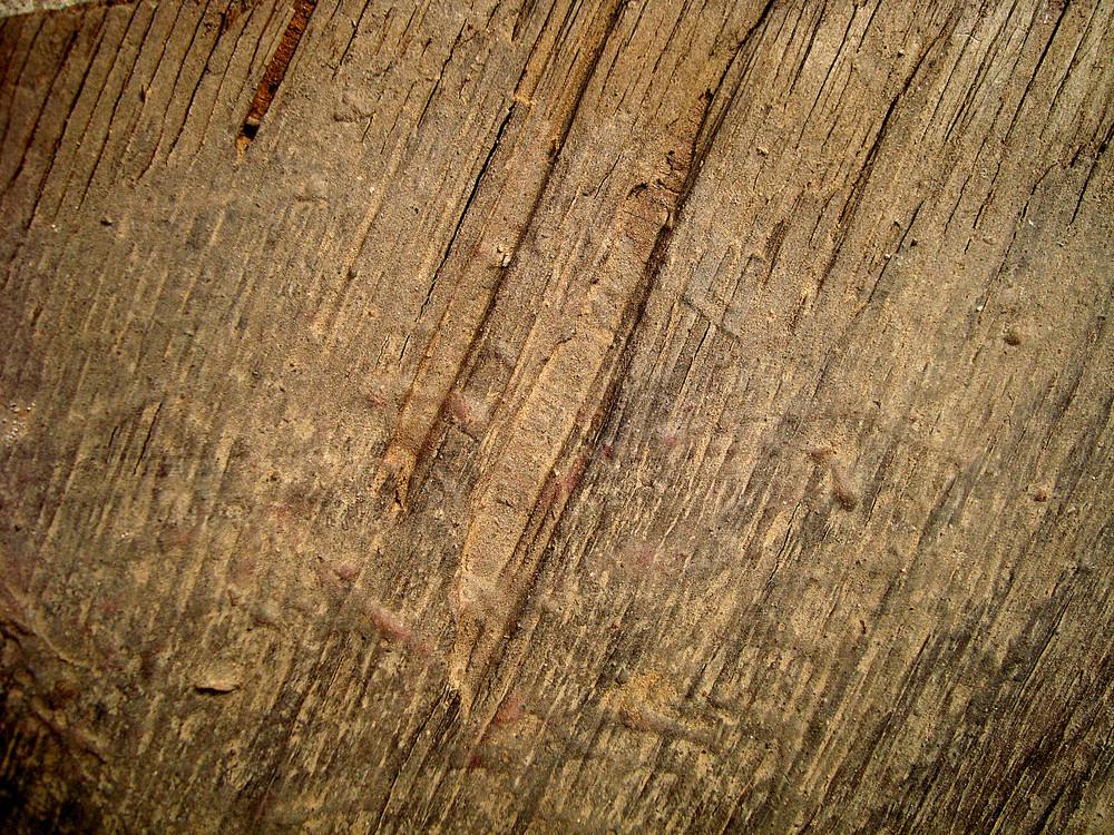 Grunge_wood_sheet