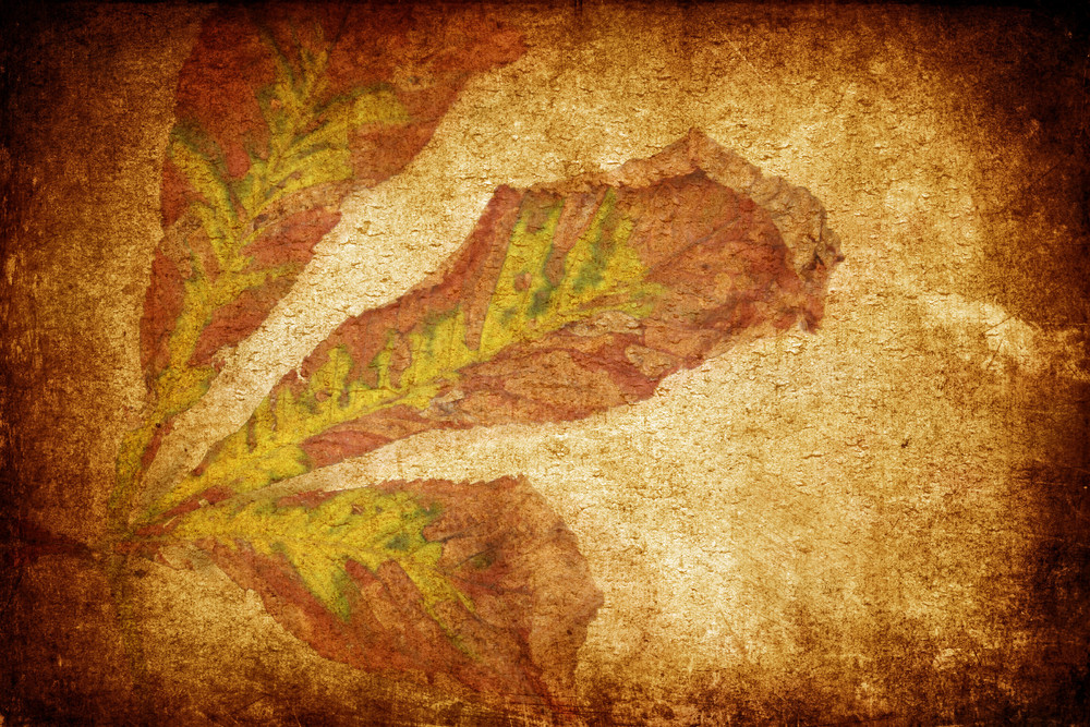 Grungy Vintage Leaves Background