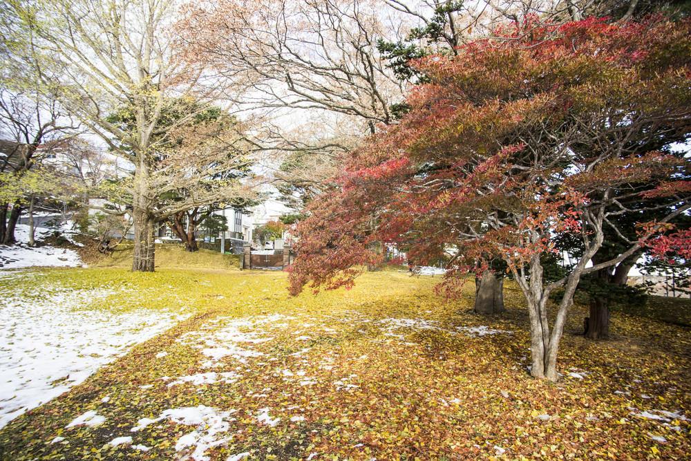 Hakodate autumn season with snow