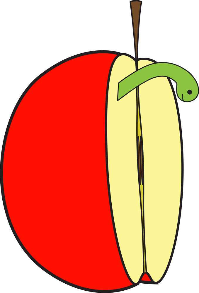 Half Apple With Insect