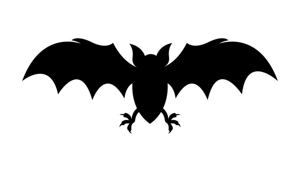 Halloween Horrible Bat