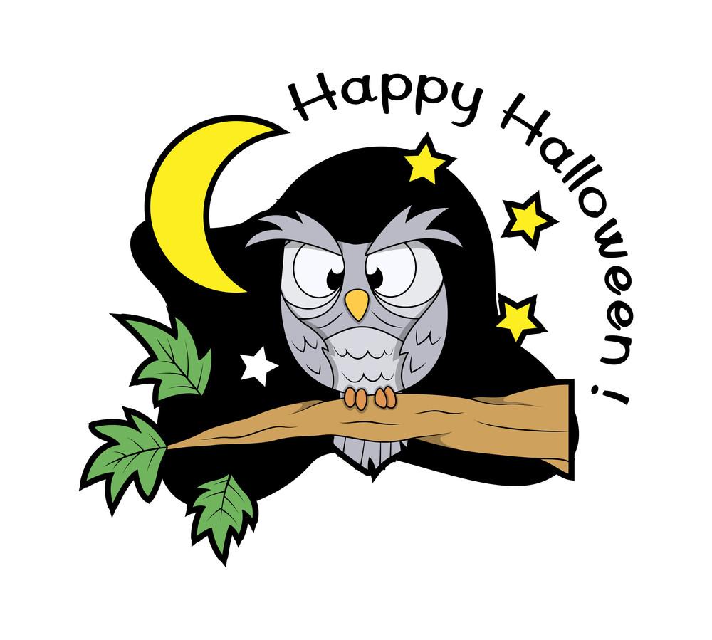 Halloween Owl Bird