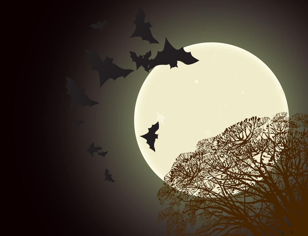 Cartel de Halloween. Vector.