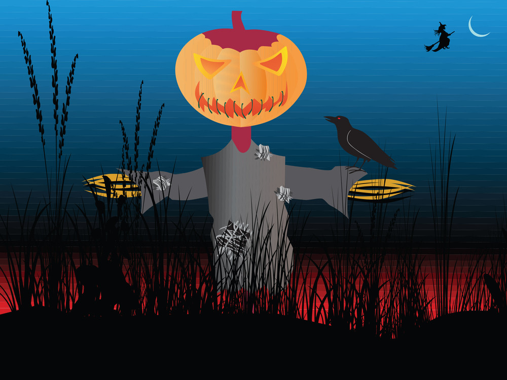 Halloween Pumpkin On The Field