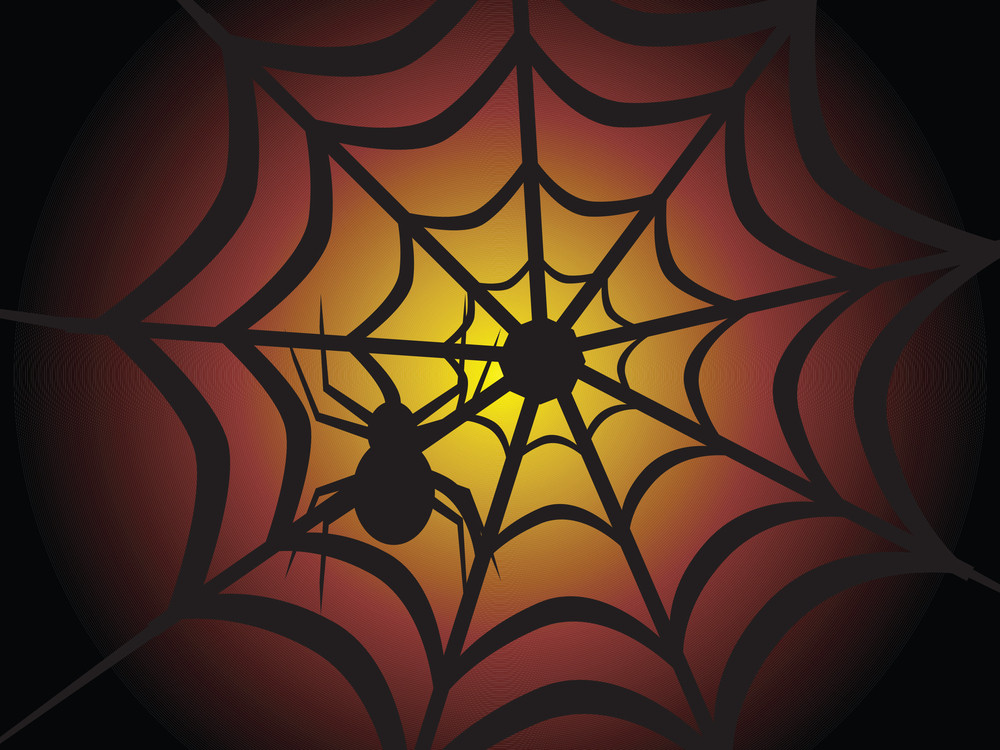 Halloween Spider On The Net