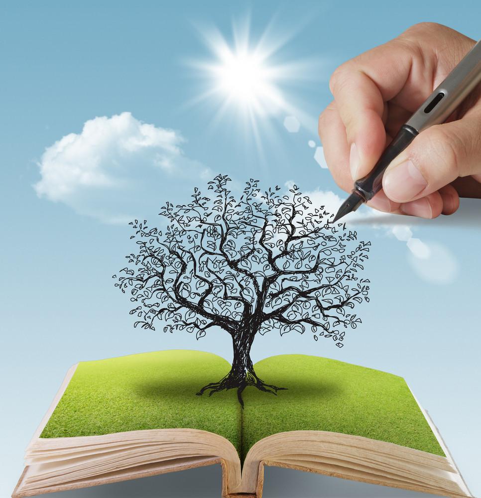 Hand Drawn The Big Tree