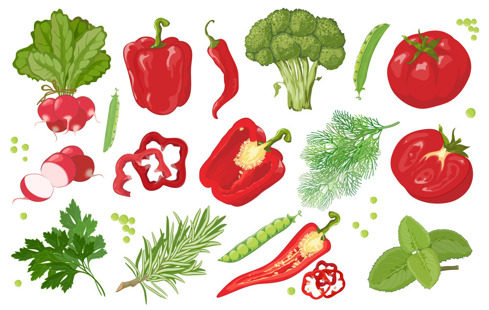 Hand Drawn Vegetables. Red And Green. Vector.