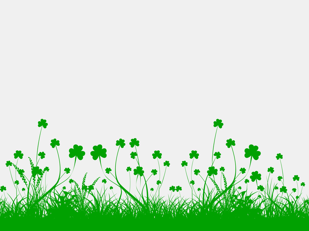 Happy St. Patrick's Day Concept With Beautiful Clover Leaves On Abstract White Background.