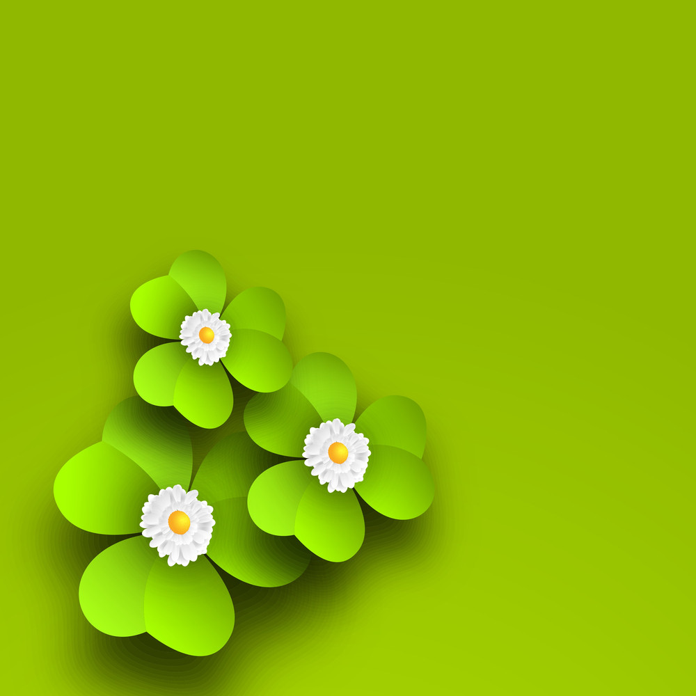 Happy St. Patrick's Day Concept With Beautiful Shemck Leaves And Flowers.