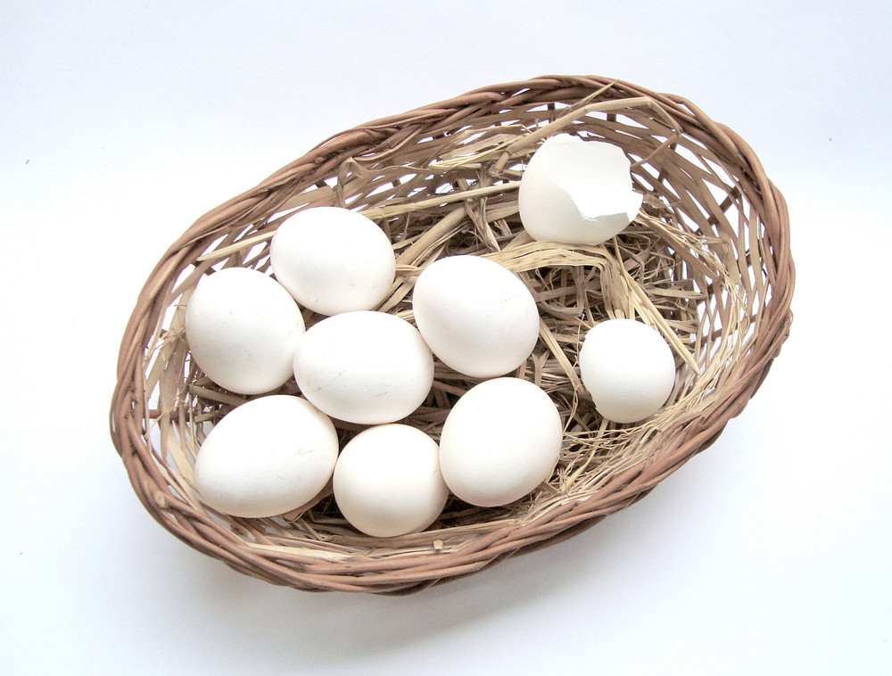 Hatched Eggs