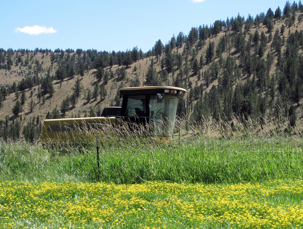 Hay Machine In Field