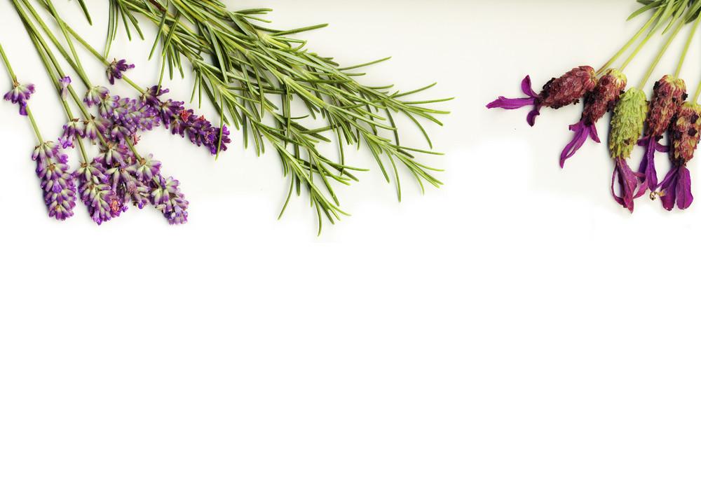 Healing Herbs (lavan