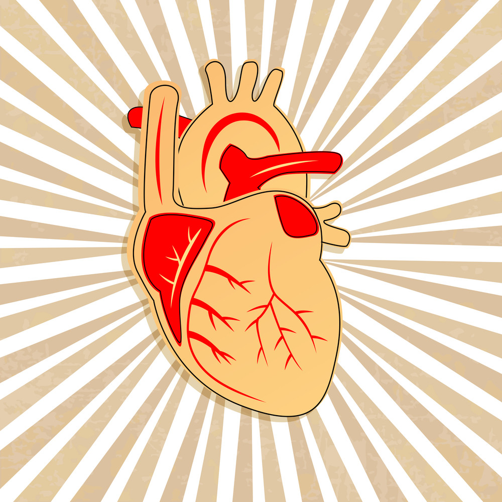 Health & Medical Concept With Heart Shape On Rays Background.